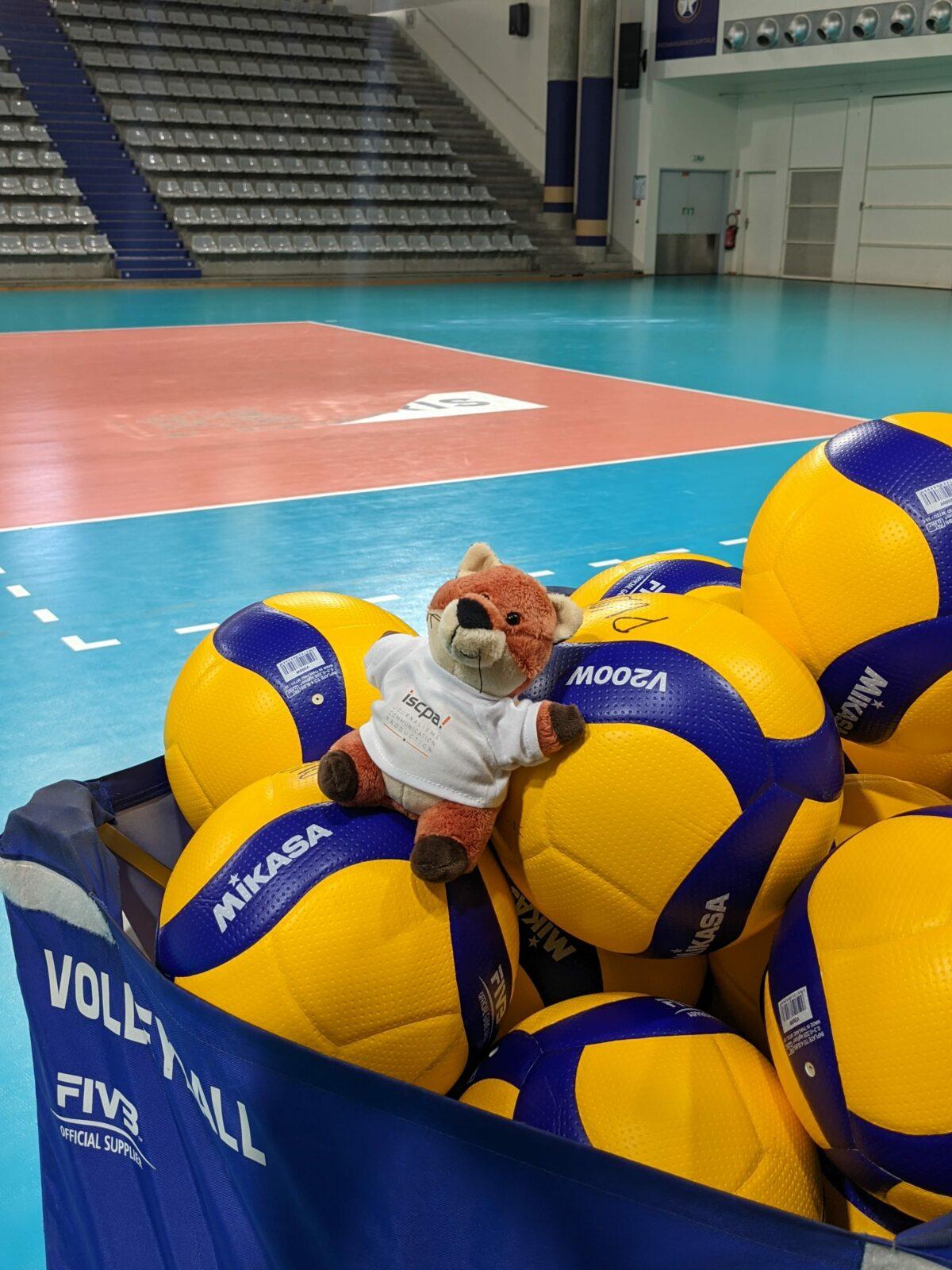 EQ 15 Paris Volley, un club en avant vers le changement